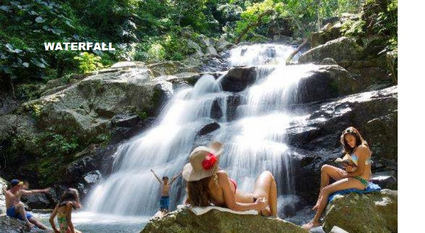 Zipline Waterfall Jungle Safari